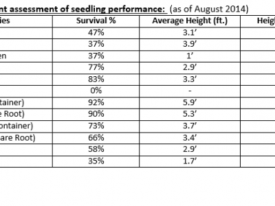 Four-year planted seedling performance data