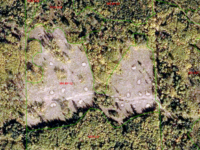 Aerial photo view of the site