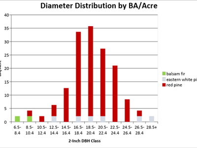 Figure 1: Diameter distribution by BA/acre of the treated area of Camp 8 in 2018, cruised with a BAF of 40