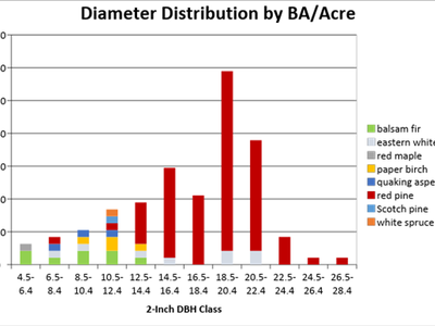 Figure 3: Diameter distribution by BA/acre of the untreated area of Camp 8 in 2018, cruised with a BAF of 40