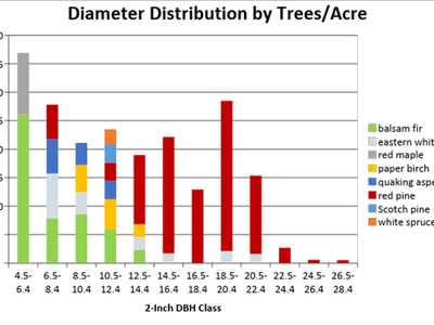 Figure 4: Diameter distribution by trees/acre of the untreated area of Camp 8 in 2018, cruised with a BAF of 40