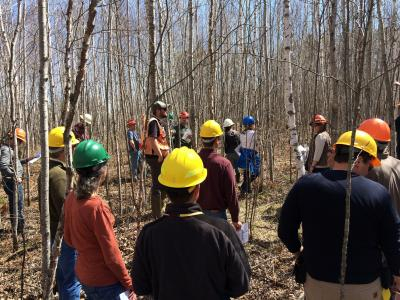 Former CFC forest manager Mike Reinikainen leads a tour of the birch spacing trials