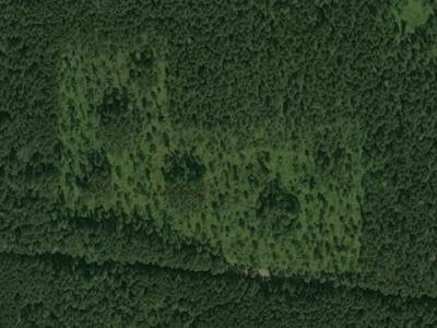 Figure 8. CNF variable retention red pine treatment aerial image.