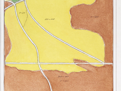Figure 2: Hand-drawn vegetation cover-type map from 1929. The Danish thin plots are in the 0-20 age class area in the upper left, between the two roads running roughly NW to SE. The yellow areas are jack pine, while the green areas are red pine.