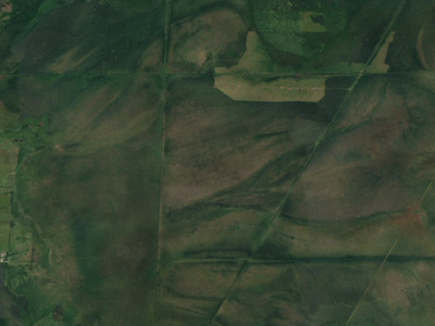A Google Earth satellite view of the greater study area. Much of what is shown on this map is lowlands with B277A and B278A soil series.