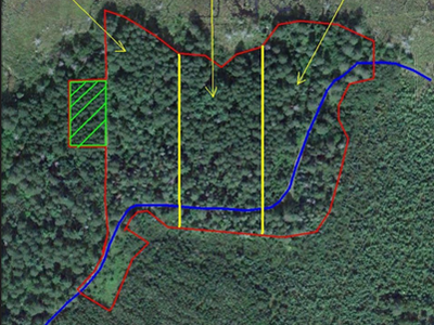 Figure 1: Pre-harvest sale area map overlaying 2011 Google satellite imagery with sale area outlined.