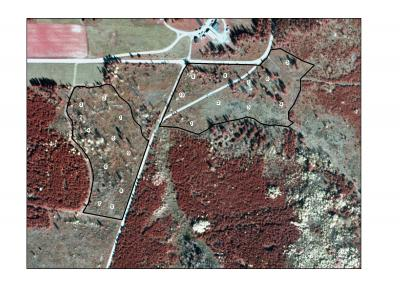 aerial photo of the treatment area with regeneration plots designated