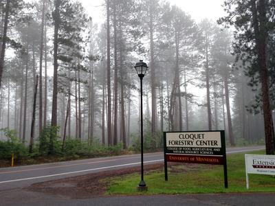 A view towards the eastern tract of the prescription area from the main entrance to the Cloquet Forestry Center.