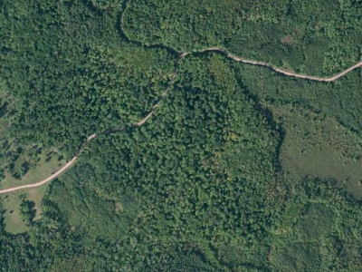 Leaf-on aerial image from Bing Maps / Wisconsin PLSS Finder