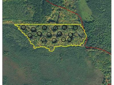 The timber permit area is outlined with 15 different circles marking the sale area within the timber permit. A county forest road is shown to come in contact with the edge of the timber permit boundaries.
